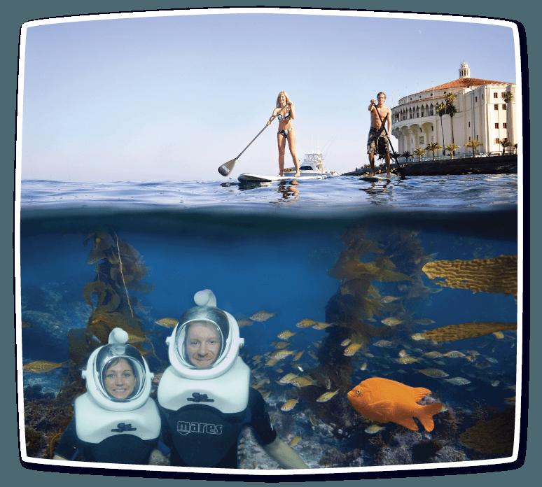 Catalina Sea Trek Eco Tour