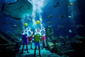Sea TREK Atlantis in an aquarium