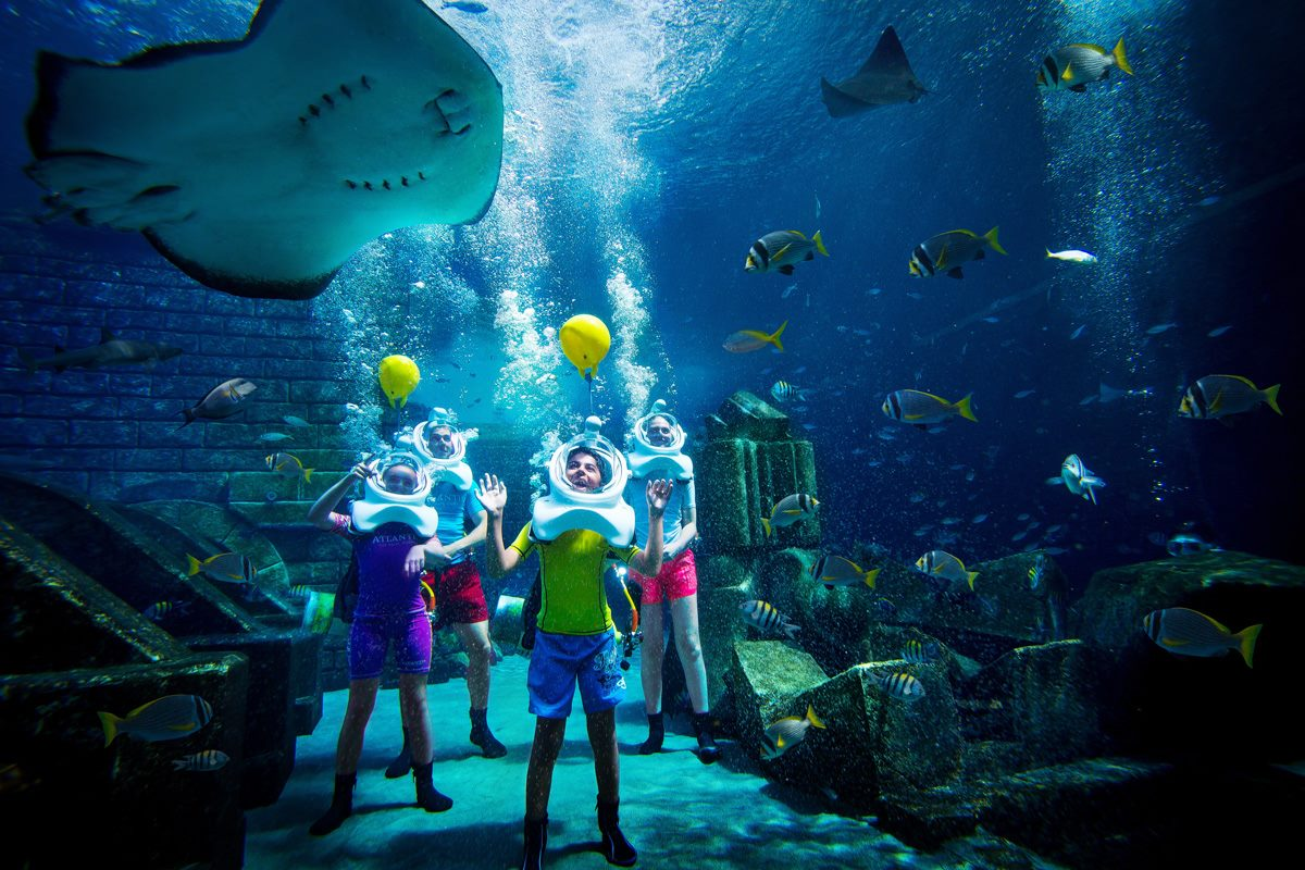 Sea TREK Atlantis in an aquarium