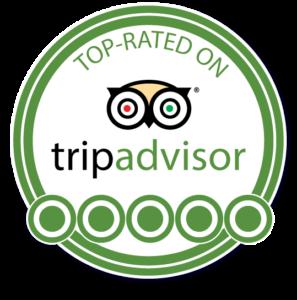 trip advisor top rated