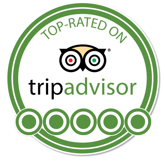 trip advisor top rated