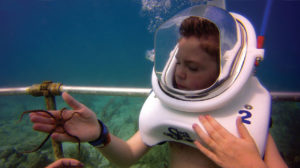 sea trek kid with starfish