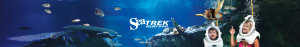 Sea TREK instagram